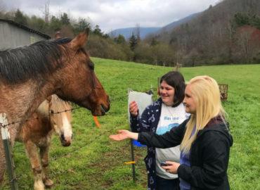 fsf-volunteers-3-feeding-horses